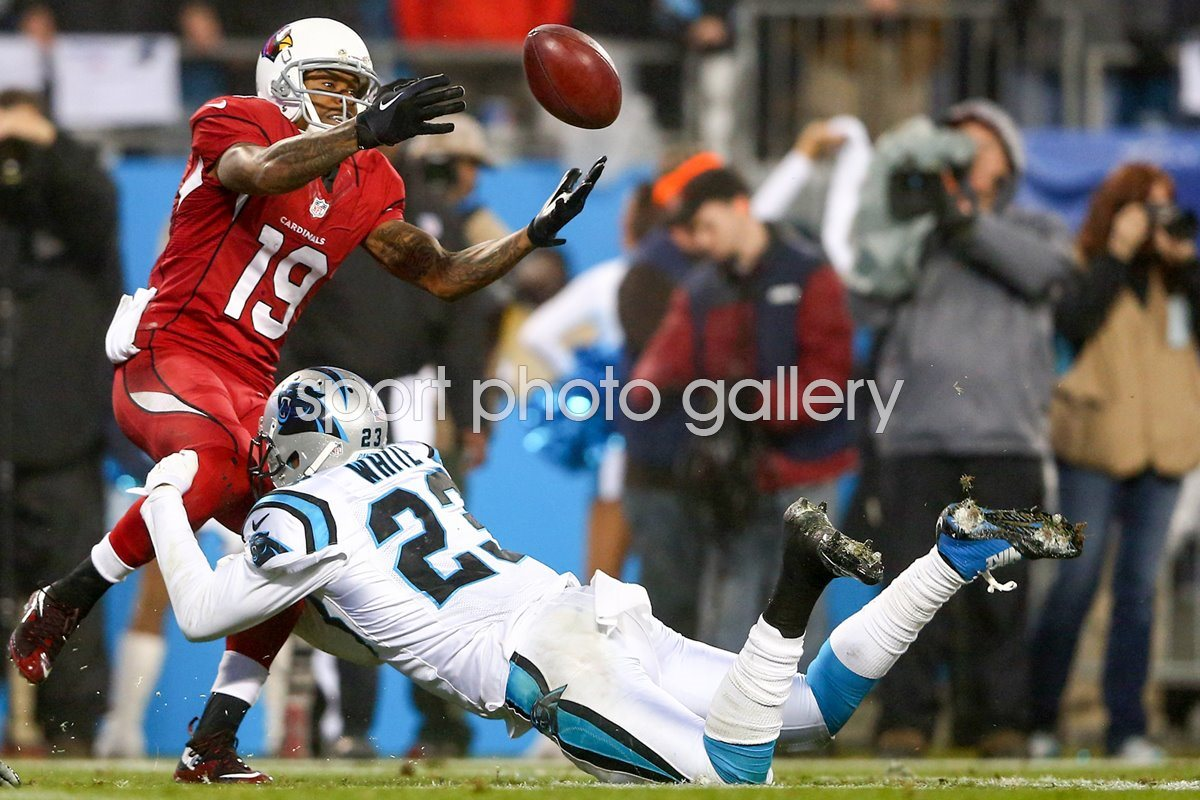 Wild Card Playoffs Melvin White Panthers v Cardinals 2015