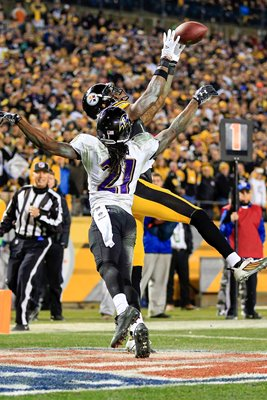 Wild Card Playoffs Martavis Bryant Steelers v Ravens 2015